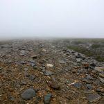 Vandretur omkring Kingussie, Cairngorm National Park, Skotland