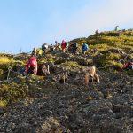 Zig Zag Hike Mt. Fuji