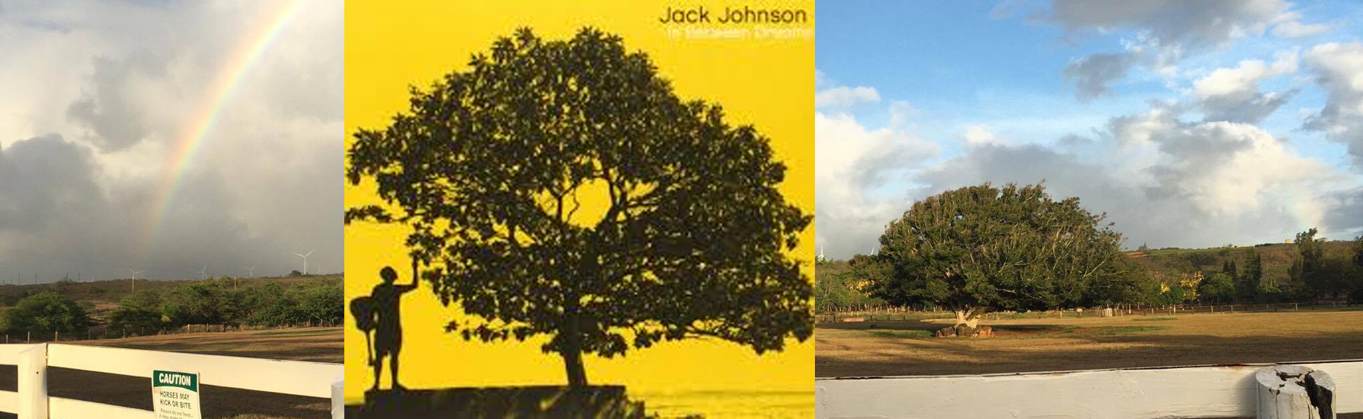 Jack Johnson, Hawaii
