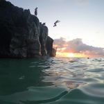 Cliffdiving in Waimea Bay, Hawaii